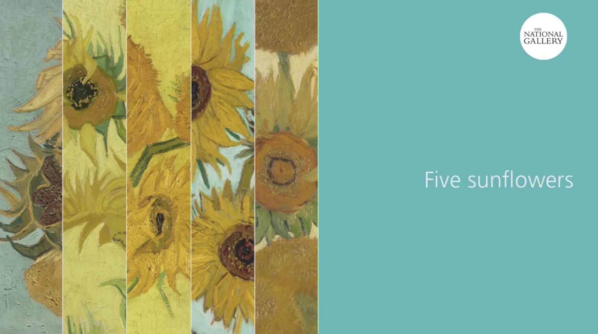 Five_sunflowers_Van_Gogh_Live_streaming